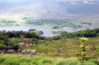 Ring of Kerry - 075